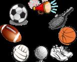 COVID Sports: A Senior Perspective